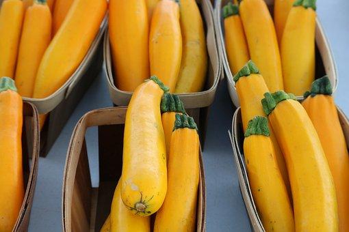 Vegetable, Zucchini, Organic, Healthy, Fresh, Food