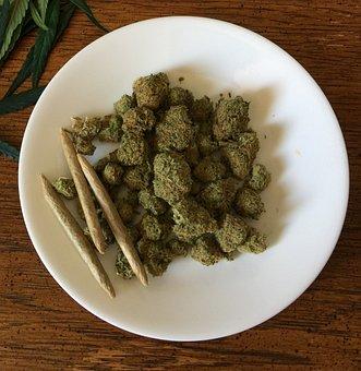 Cannabis, Marijuana, Weed, Drug, Hemp, Medicine, Plant