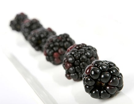 Berry, Black, Blackberry, Blueberry, Breakfast, Closeup
