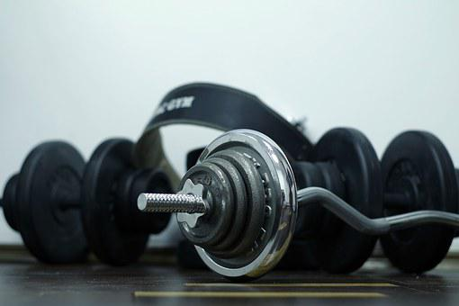Sport, Exercise, Gym, The Muscles, Health
