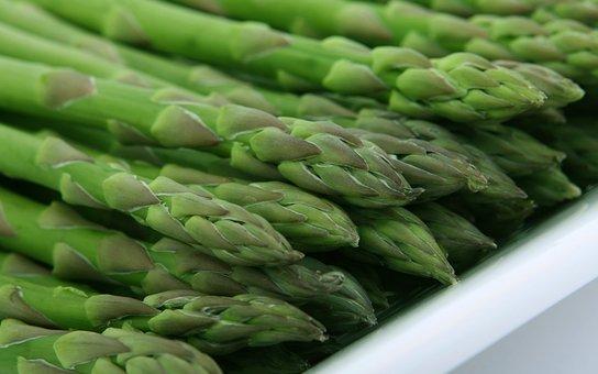 Asparagus, Food, Fresh, Green, Healthy, Leaf, Organic