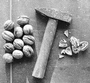 Nutcracker, Hammer, Nutshell, Diet, Health, Macro
