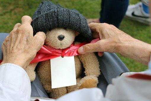 Grandparent, Grandfather, Teddy, Teddy Bear, Hands