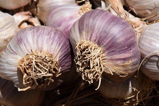 Garlic, Heads Of Garlic, Tubers, Food, Eat, Spice