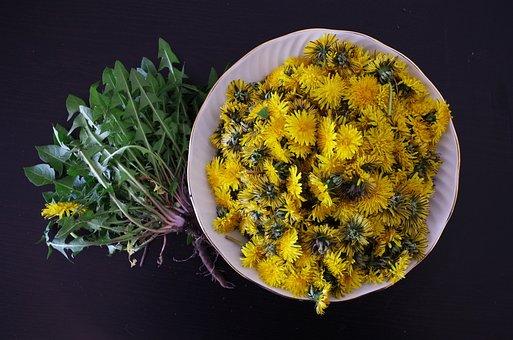 Dandelion, Health, Salad, Flowers, Recipe, Foliage