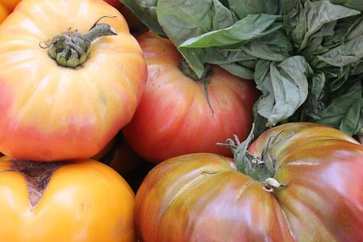 Heirloom, Tomatoes, Tomato, Vegetable, Red, Healthy