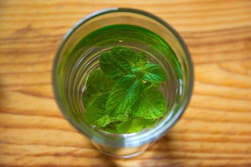 Mint, Green, Leaf, Glass, Lemon, Liquid, Medicine
