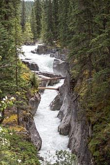 Maligne River, Jasper, Alberta, Wild, Raging, Rapid