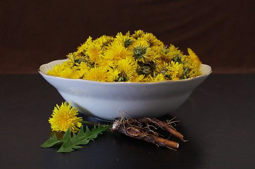 Dandelion, Health, Salad, Flowers, Recipe