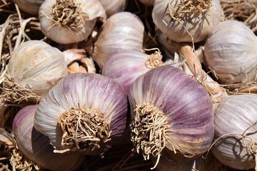 Garlic, Heads Of Garlic, Food, Eat, Spice, Tuber, Sharp