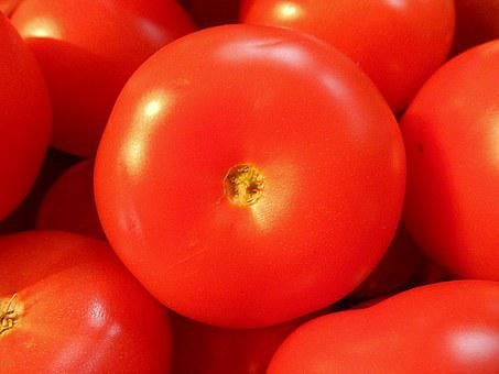 Tomatoes, Fruit, Vegetables, Food, Fresh, Organic