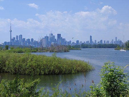 Tony Thompson Park, Toronto, Canada, Urban Park, Green