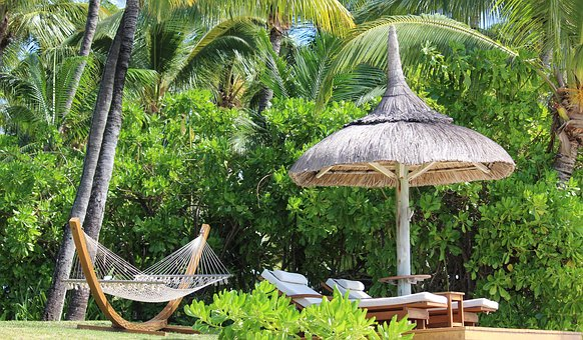 Hammock, Parasol, Palm Trees