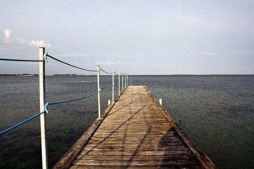 Web, Baltic Sea, South Funen Archipelago, Kragenäs