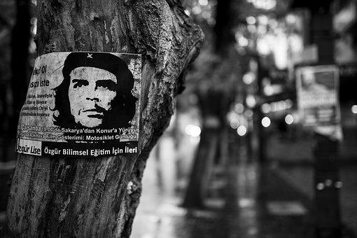 Che Guevara, Tree, Poster, Revolution, Left, Freedom