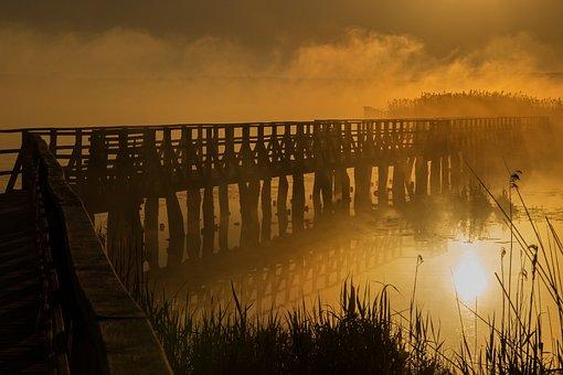 Mood, Morning, Fog, Sunrise, Mystical, Nature