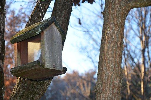 Manger, Birds, Nest Box, Garden, Winter, Animal