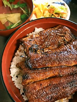 Eel, Rice Bowl, Your Bowl