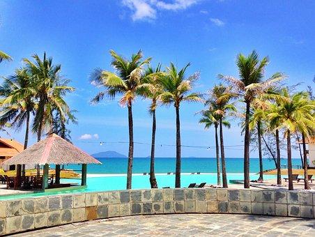 Resort, Palm Tree, Coconut Tree, Beach, Palm Trees