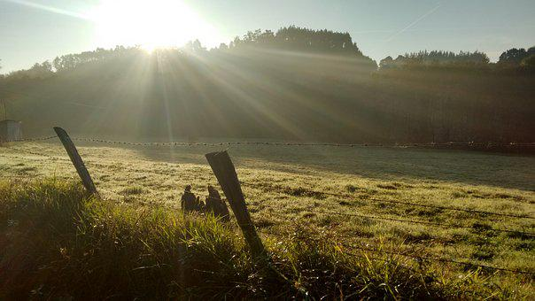 Sol, Rays, About, Lawn, Eventide, Gratitude, Twilight