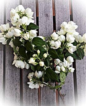 Jasmin, Flowers, Bouquet, South American Jasminart