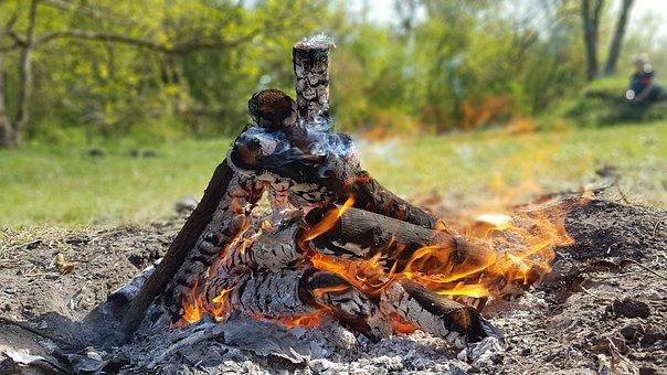 Fire, Koster, Shish Kebab, Summer, Firewood, Fever