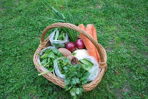 Green, Carrot, Food, Vegetable, Healthy, Diet, Fresh