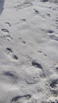 Footprints, Sand, Beach, Ocean, Footstep, Barefoot