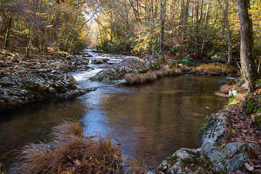 Creek, Smoky Mountain National Park, Appalachia