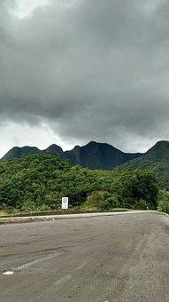 Atlantic Forest, Regis Bitencur, Brazil