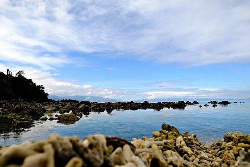 See Even, See The Rock Island, Island, Sea, Bonito