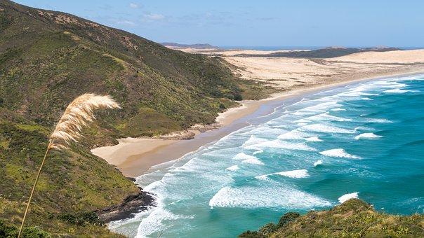 Cape Reinga, New Zealand, Nz, Sea, Waves, Landscape