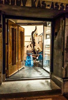 Door, Store, Cow, Hang, Upside, Down, Street, Amsterdam