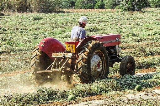 Tractor, Agriculture, Farm, Rural, Field, Watermelon