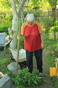 Mother-in-law, Dacha, Russia, Nature, Garden, Woman
