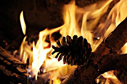 Fire, Fireplace, Lena, Pineapple, Warmth, Winter