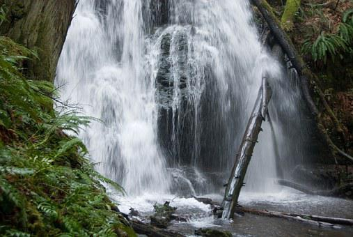 Waterfall, Nature, Water, Forest, Flow, Fresh