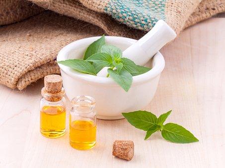 Lemon, Basil, Hairy, Natural, Spice, Kitchen, Green
