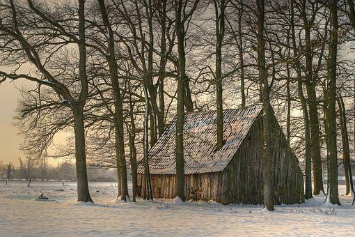 Winter, Barn, Stall, Roof, Scale, Snow, Wood, Log Cabin