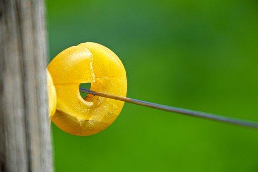 Insulator, Fixing, Pasture Fence, Eyelet
