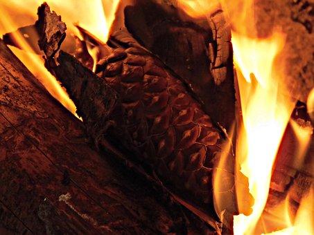 Fire, Flame, Winter, Pineapple, Bonfire, Fireplace