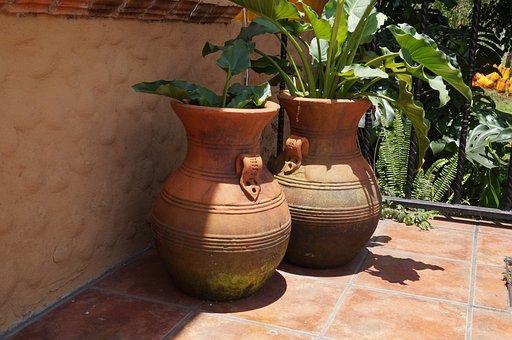 Mud, Pots, Plants, Garden, Estate, Mexico, Spring, Leaf