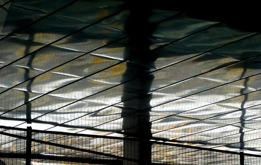 Roof, Shiny, Panels, Rectangular, Reflecting, Light