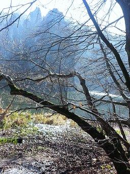 Externsteine, Forest, Mountains, Rhine-westphalia