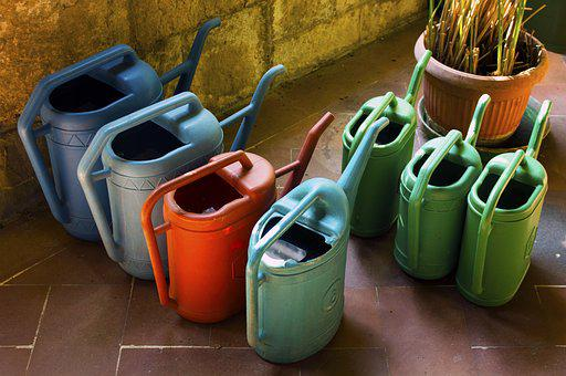 Water, Irrigation, Watering Can, Garden, Gardening