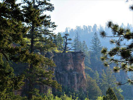 North Rim Grand Canyon, Hiking, Landscape