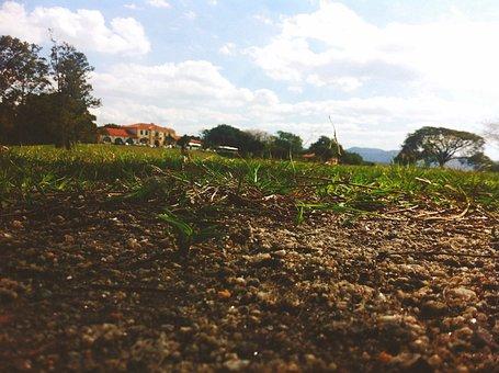 Earth, Agronomy, Landscape