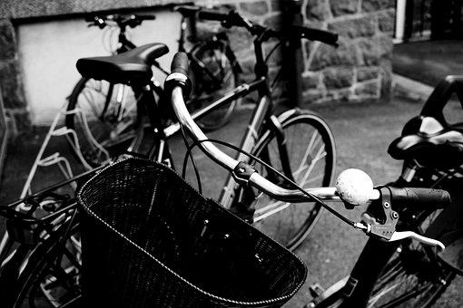 Park, Cycle Basket, Staring Wheel, Cycle, Bicycle, Bike