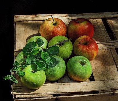 Still Life, Apples, Box, Sprig