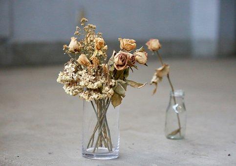 Vase, Dry Flower, Glass Bottles